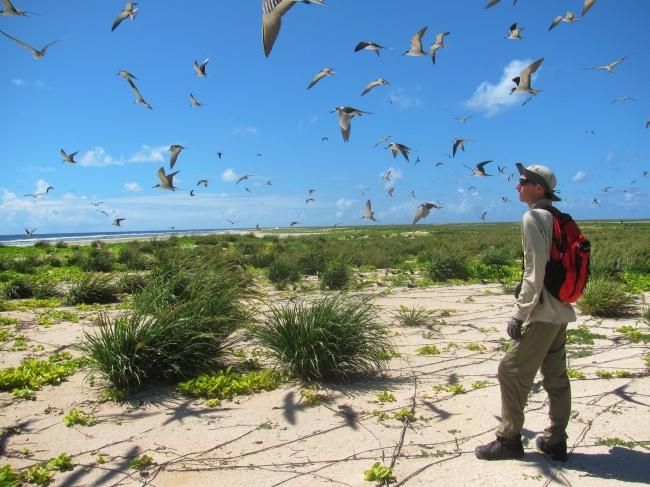 Vēro dabas parādības ne tikai monitorā - esiveiksmigs.lv - @Forest Starr and Kim Starr