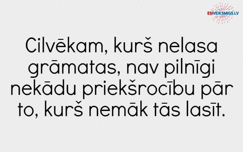 marka-tvena-atzina_esiveiksmigs.lv (15)
